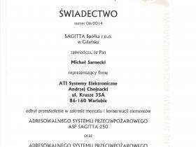 a) Sagitta Michał 001
